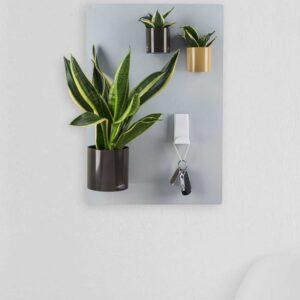 Silberne Magnettafel als magnetische Wanddekoration für Pflanzen und magnetische Produkte im Wohnzimmer