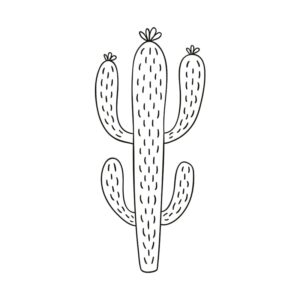 Securit Schablone für Fenster zum Nachzeichnen Kaktuspflanze